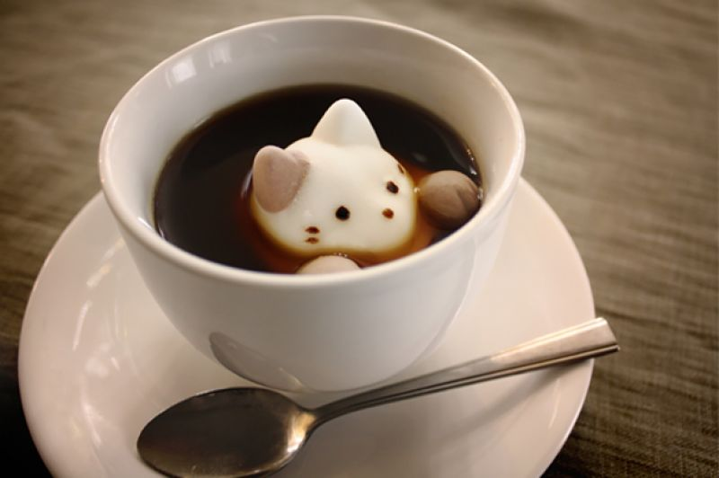 Cute cat marshmallow for coffee.