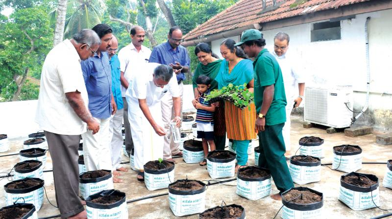Cm pinarayi vijayan takes to farming on cliff house terrace for Terrace krishi