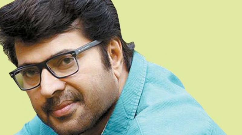mammootty malayalam actor wiki