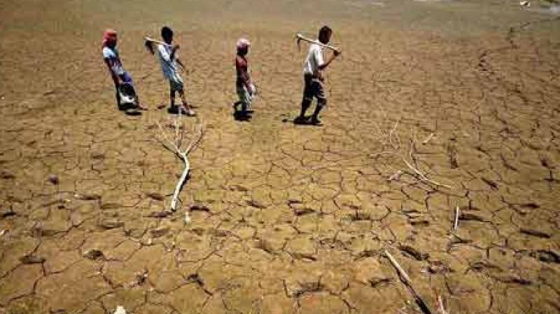 Image result for drought karnataka