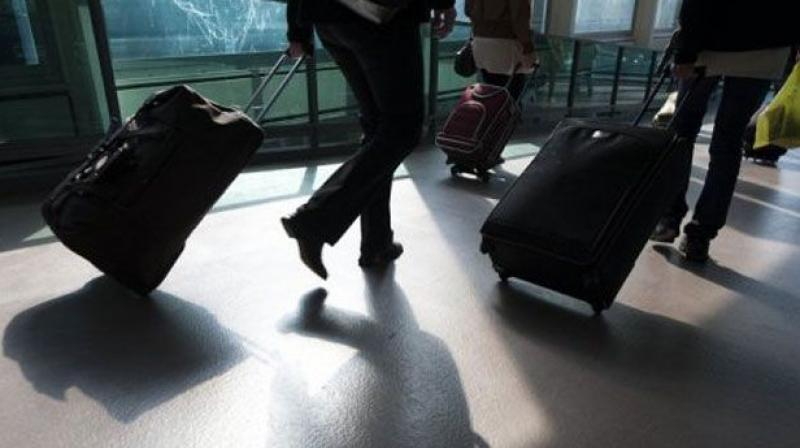 Austrian customs officials find human intestines in luggage