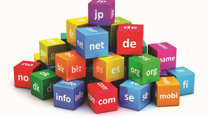Image result for Internet Domain