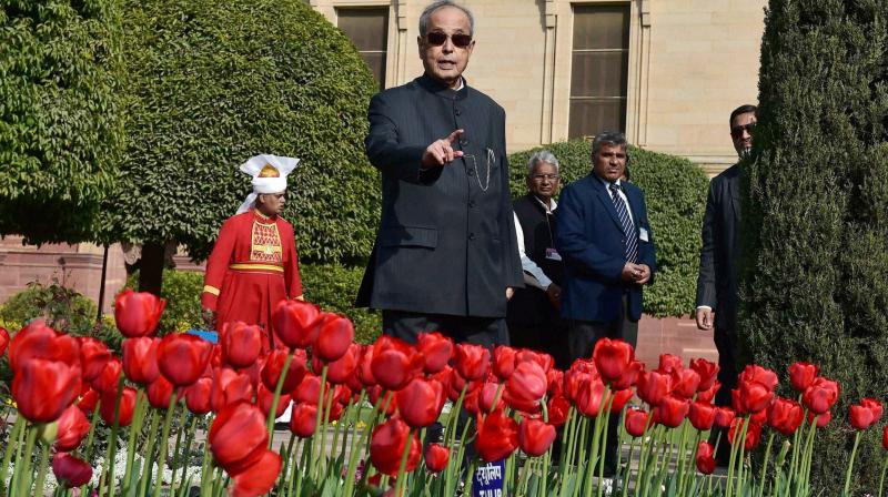 Pranab Mukherjee admires Tulip flowers at Rashtrapati Bhavan's Mughal Gardens during its press preview in New Delhi. (Photo: AP)
