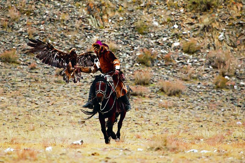 A Kazakh eagle hunter at Bayan Ölgii Aimag, Mongolia