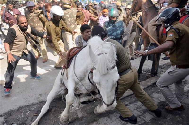 File photo of Police personnel trying to sheild the horse from protesters. (Photo: PTI)