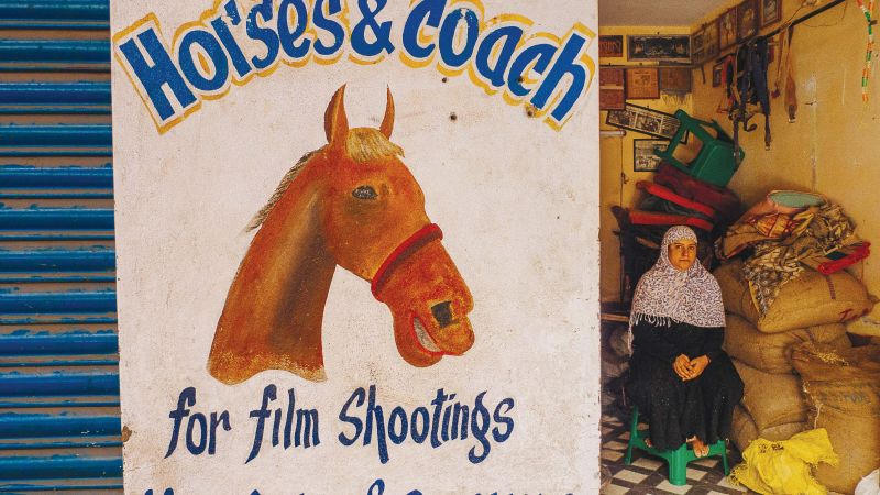 A shop that rents horses for shootings in Bengaluru