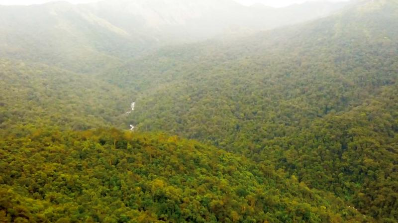 The present technique used by central and state governments in India, to come out with forest cover reports