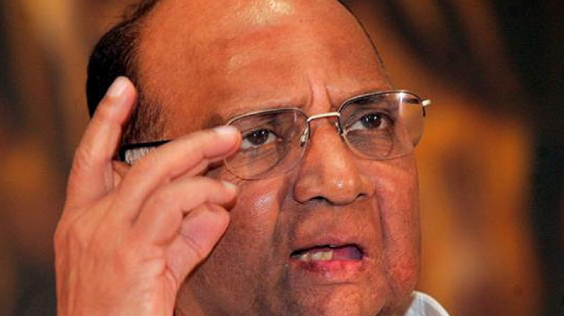 Sharad Pawar said Modi criticises Jawaharlal Nehru, but it was the former prime minister who brought industries to the country after Independence. (Photo: PTI)