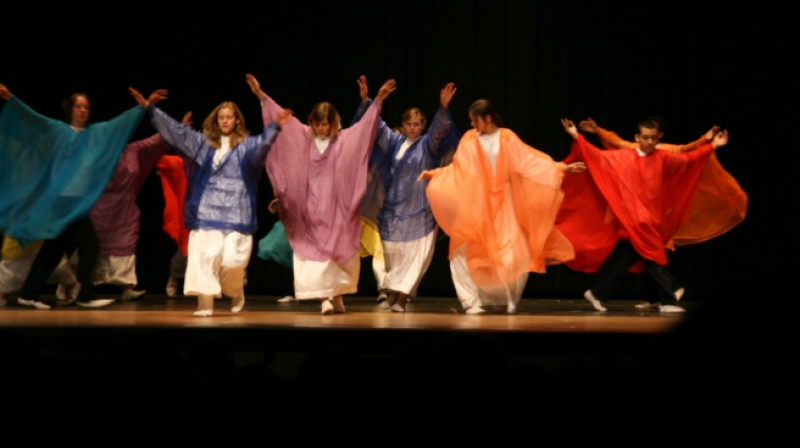 Dance dramas involving the art of eurythmy usually have major references to nature. (Representative Photo: Flickr)