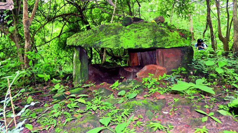 A megalithic tomb found in the Tadvai forests near Dameravai village in Warangal.(Photo: DC)