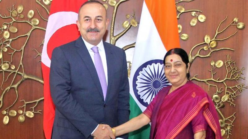MEA Sushma Swaraj with Turkish Foreign Minister Mevlut Cavusoglu (Photo: Twitter)