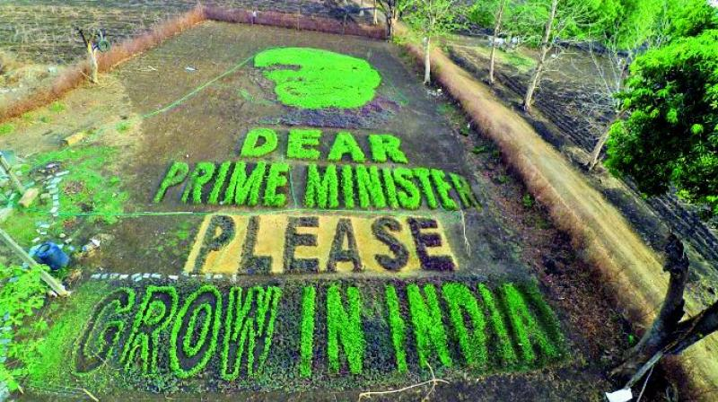 A view of the message a group of artists from Paradsinga village of Madhya Pradesh carved out to Prime Minister Narendra Modi asking him to 'Grow in India'. — Via web