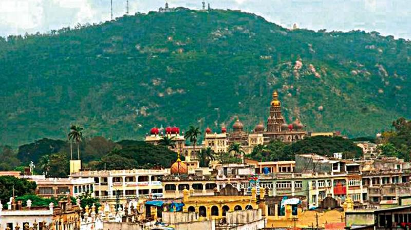 The hill with its mythological and historic significance, occupies a unique place in the life of people of Mysuru region.
