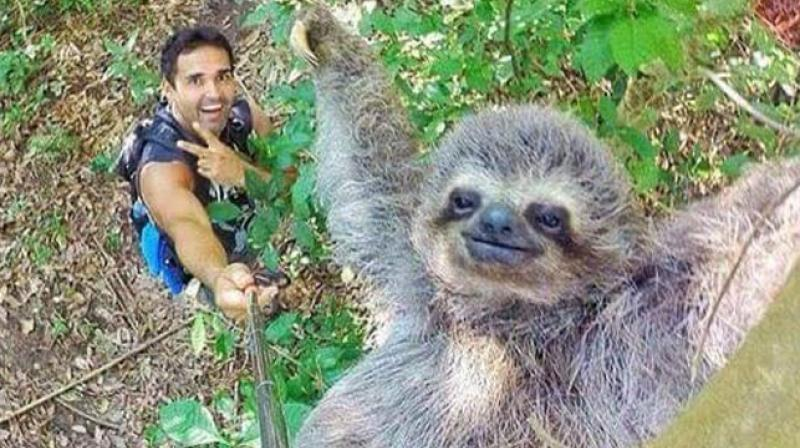 this selfie of a smiling sloth hanging from the tree will make your day