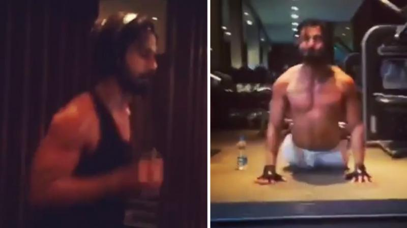 Shahid Kapoor sweats it out in the gym.