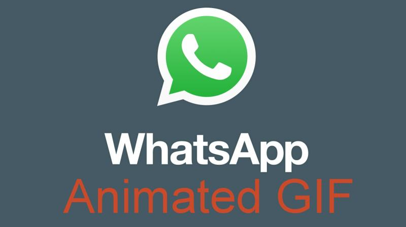 This is how to forward animated gif images on whatsapp whatsapp had rolled out the animated gif feature for beta testers for a short while negle Choice Image