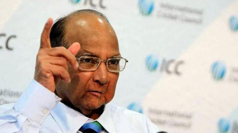 Asked about the Modi government's performance, Sharad Pawar said people's expectations from the government of the day were not fulfilled. (Photo: File   AFP)