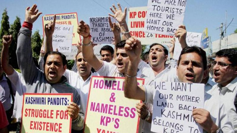 The Kashmiri Pandit community in the US held a rally applauding the Indian government's decision to revoke the Article 370 of the Constitution that accorded special status to Jammu and Kashmir. (Representational Image)