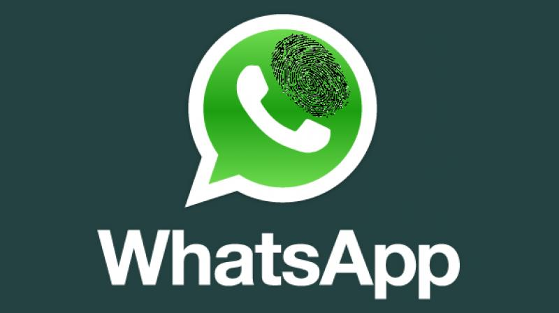 The information comes in after the new beta APK released by WhatsApp was scrutinized.