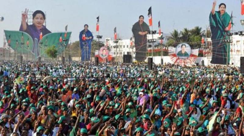 The celebrations did not abate even till afternoon when it was becoming clear that the AIADMK is going past the halfway mark. (Photo: PTI)