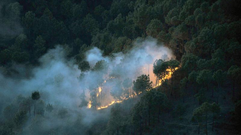 A wild fire broke out in forest at Totu in Shimla. (Photo: PTI)