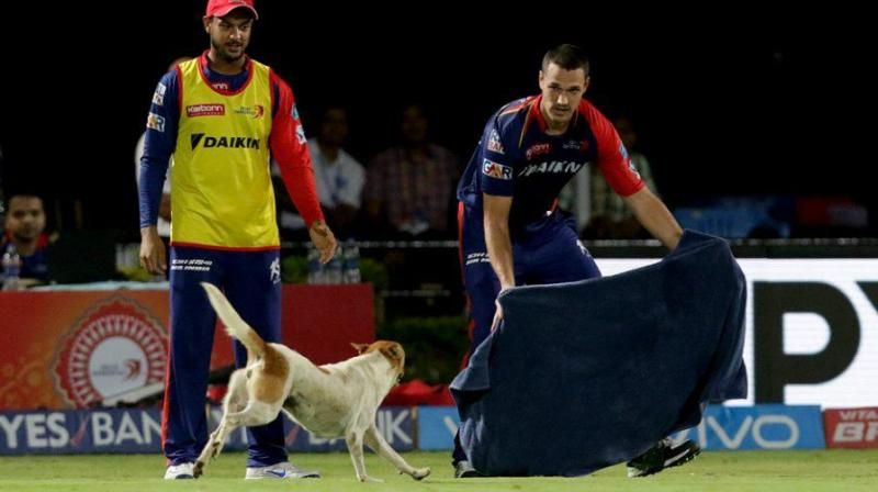A pitch invasion by a dog caused chaos at an Indian Premier League game between Pune and Delhi, sending bemused players scurrying around the pitch to try to shoo it away. (Photo: BCCI)
