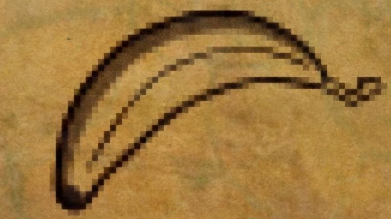 Evolution Penis 85