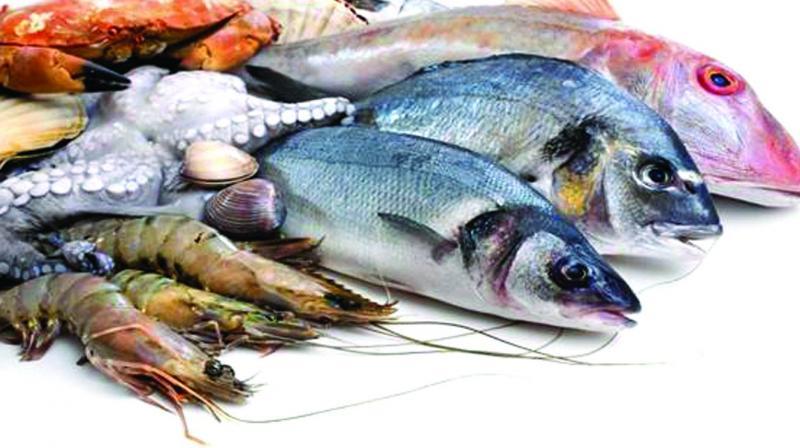 Visakhapatnam antibiotic resistant bacteria in seafood for Fish and shrimp near me