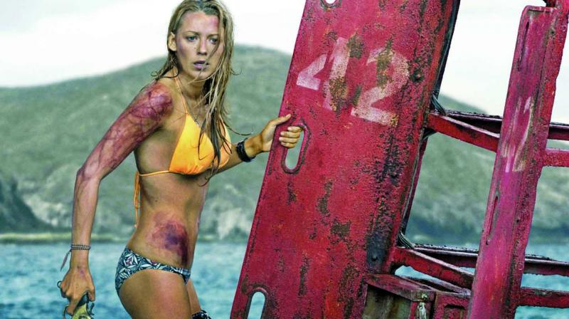 A still from the movie The Shallows