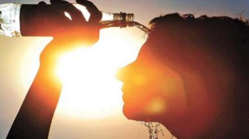 The NDMA's 'Beat The Heat India' campaign is being widely used and publicised by various other stakeholders. (Representational Image)