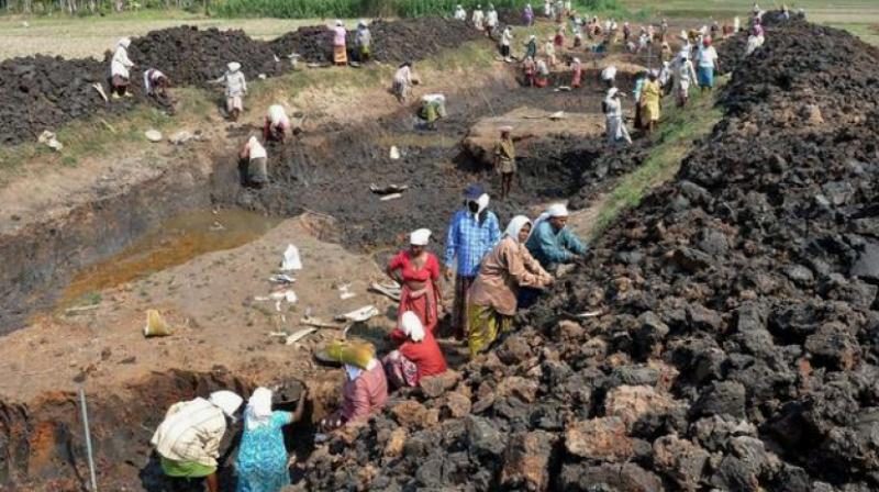 NREGA may be crucial for Modi government's efforts to quell farm distress. (Photo: File | PTI)