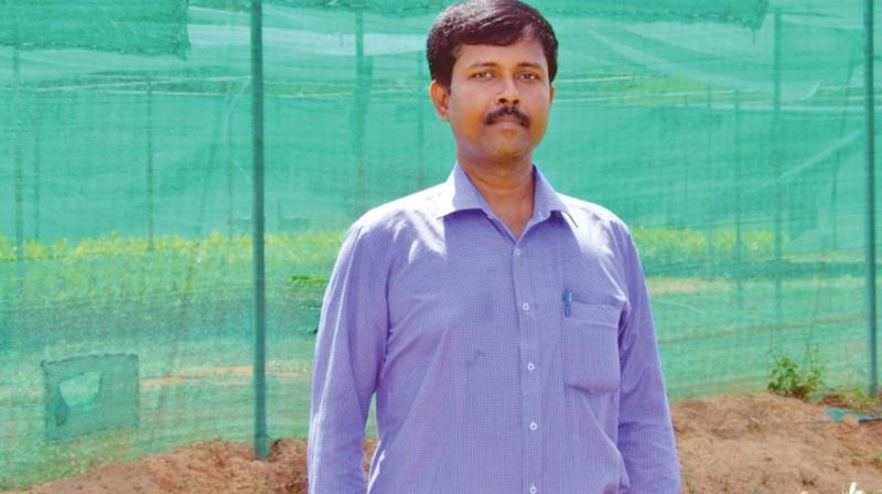 Thiruchelvam Ramakrishnan, originator and project director, Mission IT-Rural. (Photo: DC)
