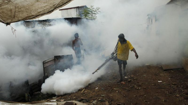 World Health Organization declares Sri Lanka free of malaria