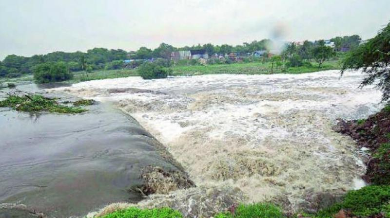 The tribunal had restricted the scope of AP Reorganisation Act Section 89, which deals with sharing Krishna waters, to the two Telugu states.