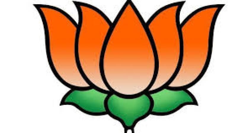 TN 'double-barrelled' overture to BJP