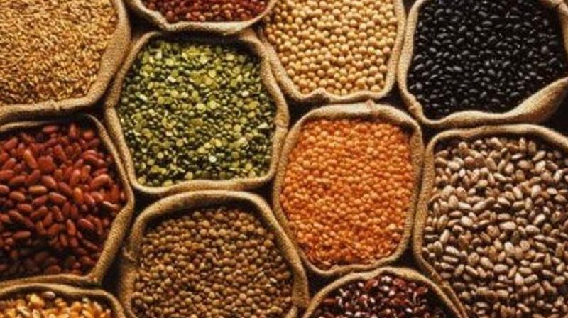 Pulses contain components that inhibit enzymes involved in absorption of glucose, and fibre contained in these foods can encourage the production of short-chain fatty acids, which can also help to reduce blood glucose levels.