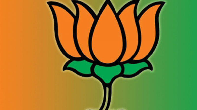 bjp-ap-special-status-central-government-supreme-c