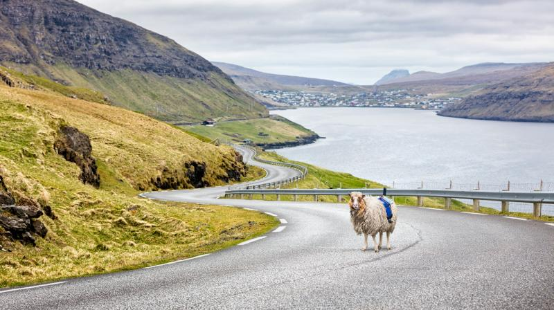 A team of experts were sent to Faroe Islands last week to help train and equip the local community to capture Street View imagery.