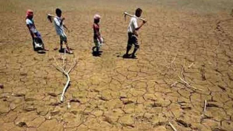 central teams to monitor drought hit areas across india until june