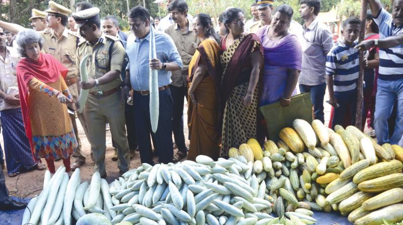 DGP Loknath Behra and wife Madhumita Behra during the inauguration of 'Poorada Chanda' an organic vegetable fair that cultivated in the jail compound on Monday in Thiruvananthapuram. (Photo: DC)
