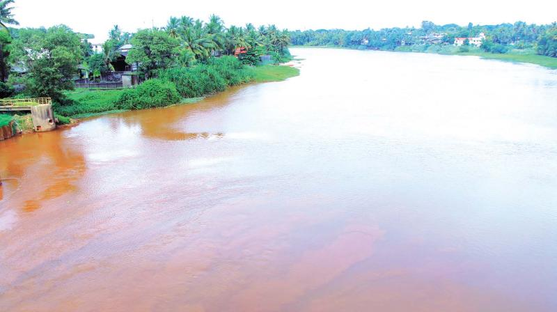 Unchecked pollution on the Periyar