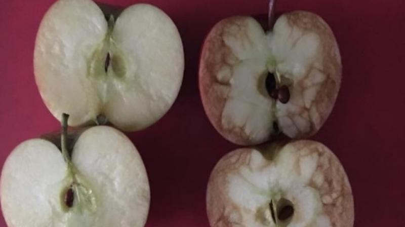 Teacher Explains The Bad Effects Of Bullying Perfectly Using Two Apples