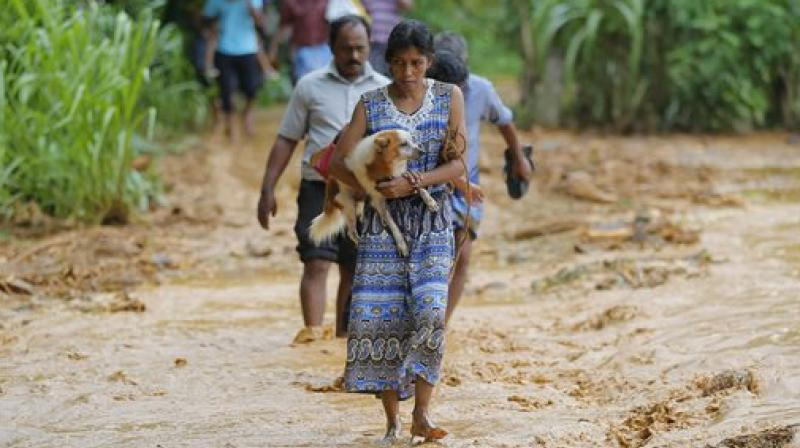 At the height of the floods, a third of Colombo's 650,000 residents were driven out of their homes, according to official figures. (Photo: AP)