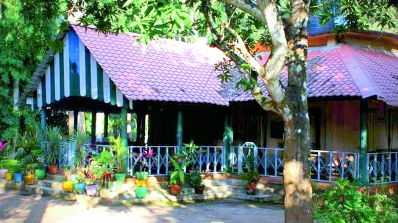 Cottages to accommodate tourists as part of eco-tourism project at Maredumilli in East Godavari.