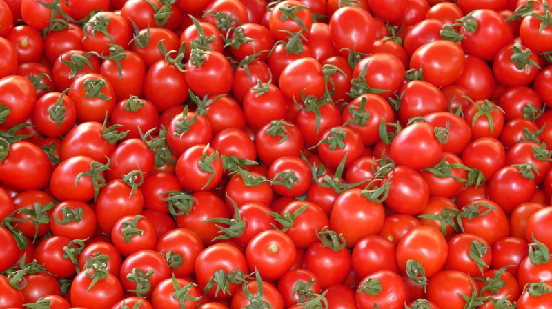 Prices of tomatoes turn red hot in retail market of Hyderabad