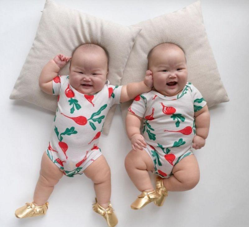 twin bears Chubby